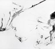 Nina Annabelle Märkl | Casting Shadows I | ink pencil charcoal on paper | 110 x 160 cm | 2011