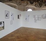 Nina Annabelle Märkl | Possible Constellations | Installation | Ursprung und Gegenwart | Schloss Dachau | 2014