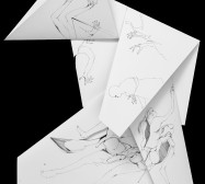 Nina Annabelle Märkl | Fragmented fiction 23 | Ink on folded paper, cut-outs | 60 x 38 cm | 2016