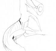 Nina Annabelle Märkl | Shadowboxers – Artist book | Ink on paper | 35 x 26 cm | 2011