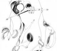 Nina Annabelle Märkl | Justice | ink on paper | 31 x 22,5 cm | 2012