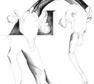 Nina Annabelle Märkl | o.T. | ink on paper | 32,5 x 22,5 cm | 2012