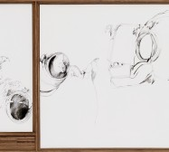 Nina Annabelle Märkl | untitled | ink on paper wood | 50 x 100 cm | 2012