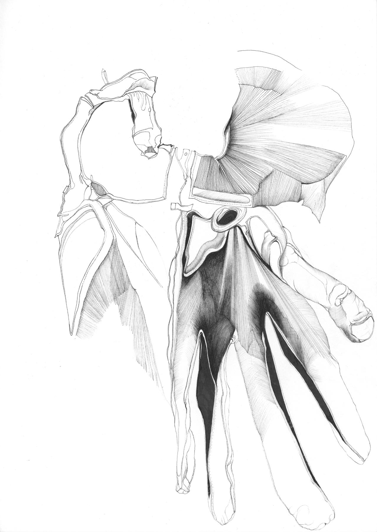 Nina Annabelle Märkl | Possible Constellations X | ink on paper | 29,7 x 21 cm