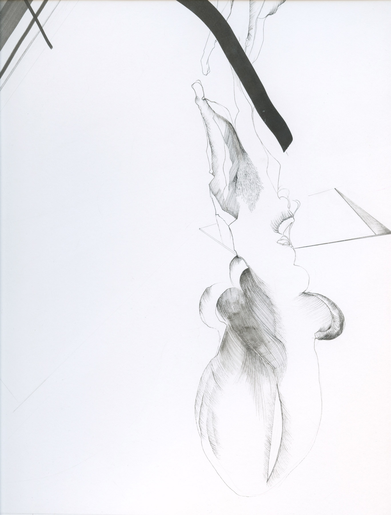 Nina Annabelle Märkl   Balancing the Whimsical 1   Ink on paper   65 x 40 cm   Detail