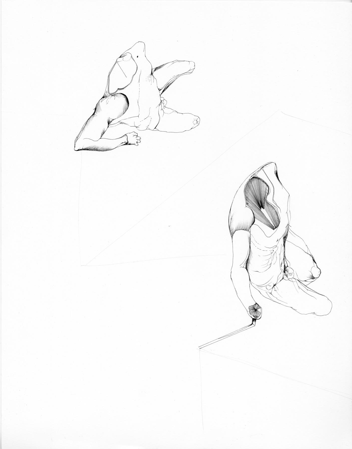 Nina Annabelle Märkl   Shifting Perceptions   Ink on Paper   35,5 x 27,5 cm   2016